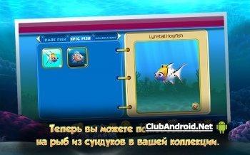 Немо. Подводный мир